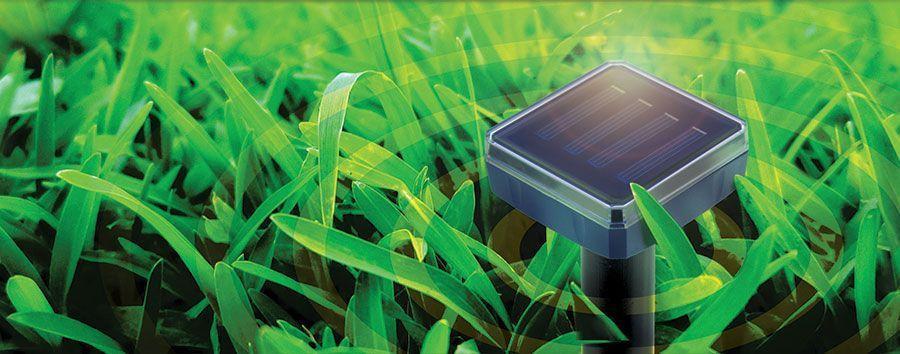 répulsif anti nuisible solaire pour jardin à ultrasons